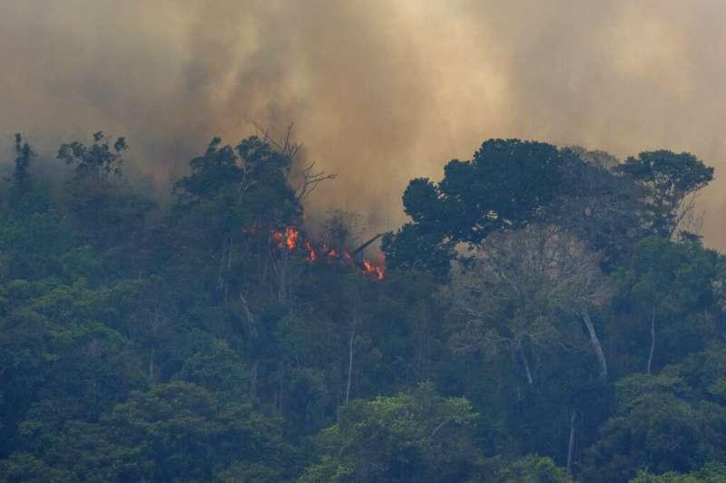 亞馬遜雨林今年爆發逾7萬場森林大火肆虐,突破6年來紀錄。(AP)