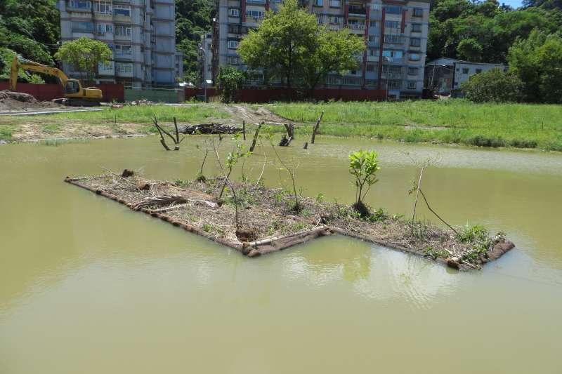 人工浮島有淨化水質、生產農作物、美化景觀、護岸等功能,圖為永春陂濕地公園中的人工浮島。(台北市政府提供)