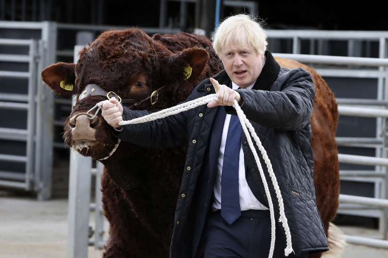 英國首相強森(Boris Johnson)近日頻頻受挫,卻仍強調「寧願死在溝渠,也絕不延後脫歐」。(AP)