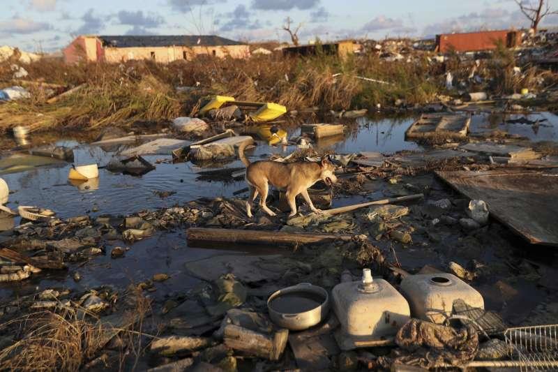 氣候變遷導致極端氣候頻傳,圖為多利安颶風肆虐巴哈馬。(AP)