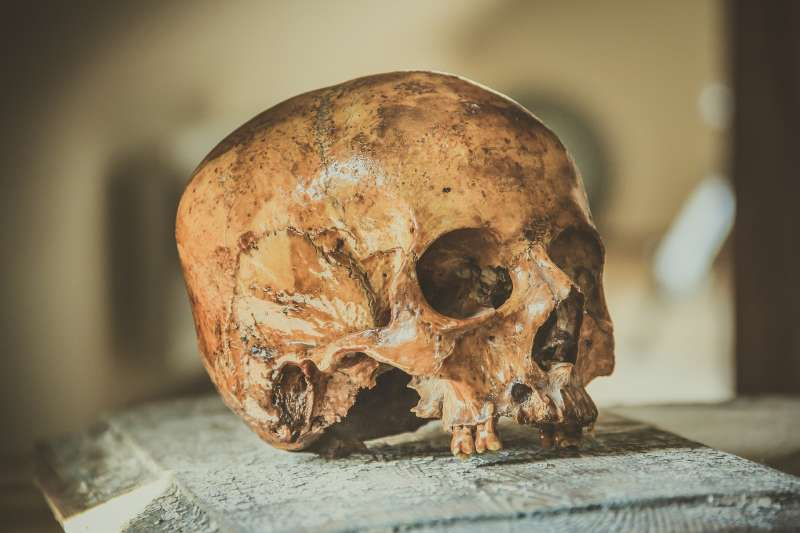 (示意圖)英國考古研究發現,6000年前新石器時代的農人就有喝牛奶的習慣。(圖/Pixabay)