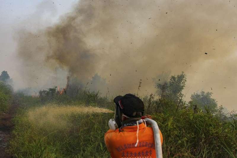 印尼森林野火引發空汙:印尼消防人員忙著滅火(AP)