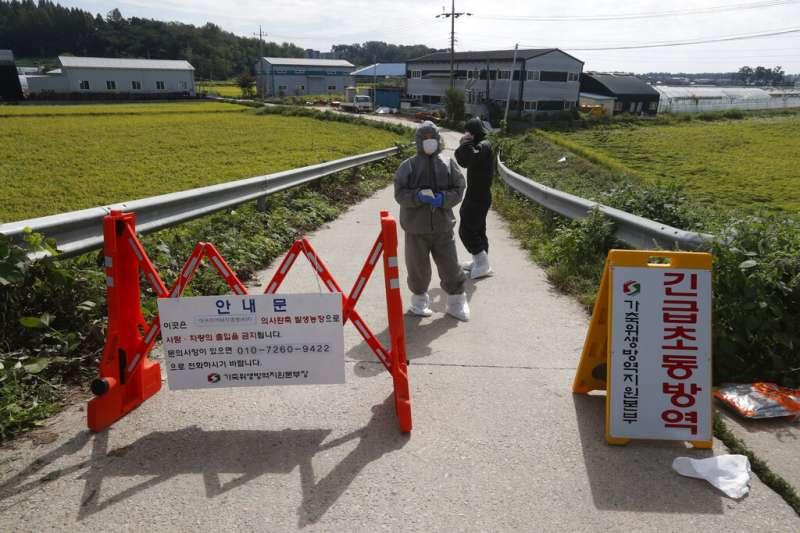防疫人員在京畿道坡州市的養豬場貼出警告標語。南韓17日宣布出現首例非洲豬瘟疫情,京畿道坡州市近4千頭豬隻當天遭到撲殺。(美聯社)