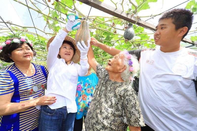 善水國中小最年長的「老學生」阿桃阿嬤帶領市長盧秀燕到校園裡的開心農場種菜,並採收南瓜。(圖/臺中市政府提供)