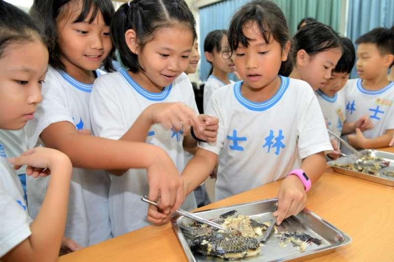 食魚文化校園講座即日開跑,希望能導引學童認識國產水產,教他們如何選魚挑魚,鼓勵更多家庭成員能食用當季當地漁產品。(圖/漁業署提供)