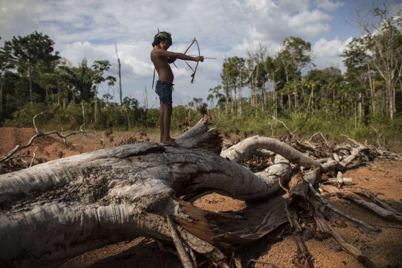 坦貝人仍舊維持弓箭狩獵的傳統。(風傳媒)