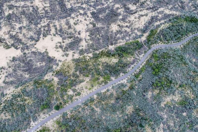 寧夏靈武白芨灘國家級自然保護區內的白芨灘國家沙漠公園。(新華社)