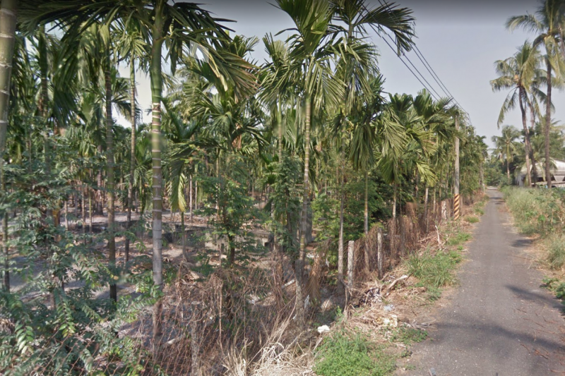 台糖拿平地造林地給民間業者當太陽光電設置場,引發內部反彈。圖為台糖建功農地。(取自google地圖)
