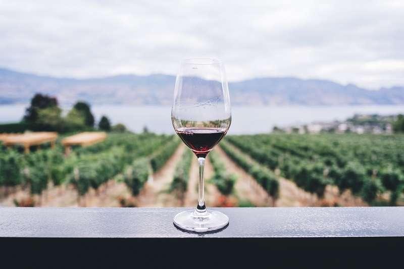 如果世界上真的出現了葡萄酒的範本,每一瓶葡萄酒喝起來都跟範本的味道一模一樣,那麼葡萄酒的價值就會跌落到罐裝啤酒、罐裝可樂的價格,因為它已經不再各有特色、耐人尋味。(圖/unsplash)