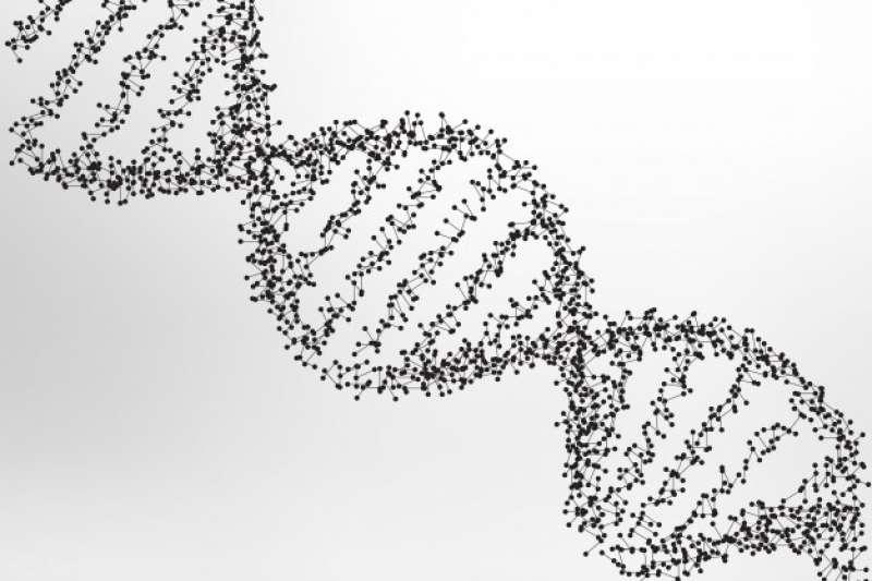 圖說:運用基因檢測判斷突變機率,找出罹癌風險。(圖/freepik)