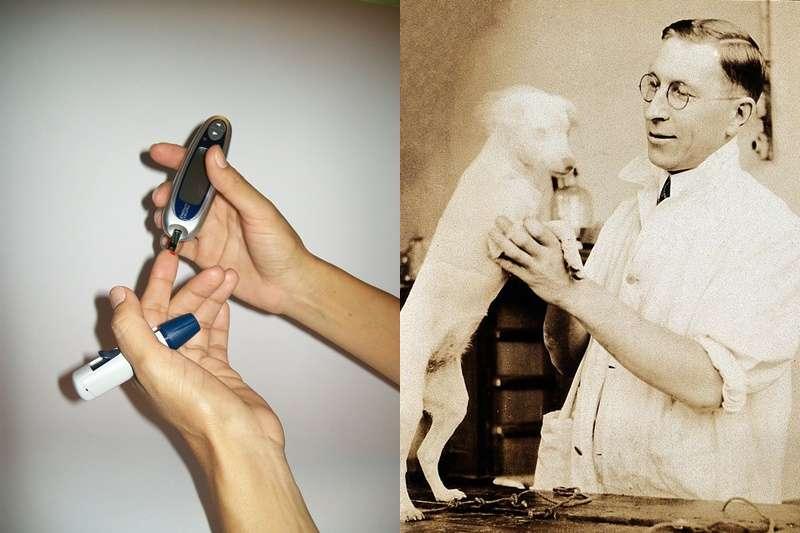 胰島素的重要發現,是無數狗狗的犧牲。左圖為成功製造胰島素的弗雷德里克.班廷與實驗狗。(圖/維基百科)