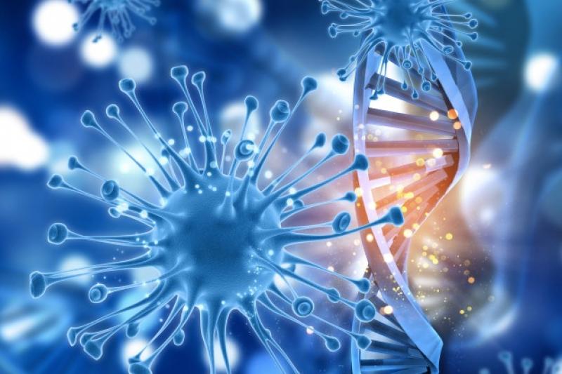已有許多遺傳性疾病都可透過胚胎基因診斷,評估是否帶有變異基因,未來是否會遺傳到家族疾病。(圖/Freepik)