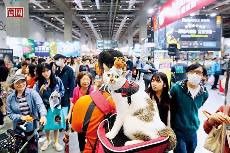 全台寵物展1年上看20檔,更有策展單位看準年年成長的貓奴消費支出,將推出貓的獨立商展搶生意。(攝影者/楊文財)