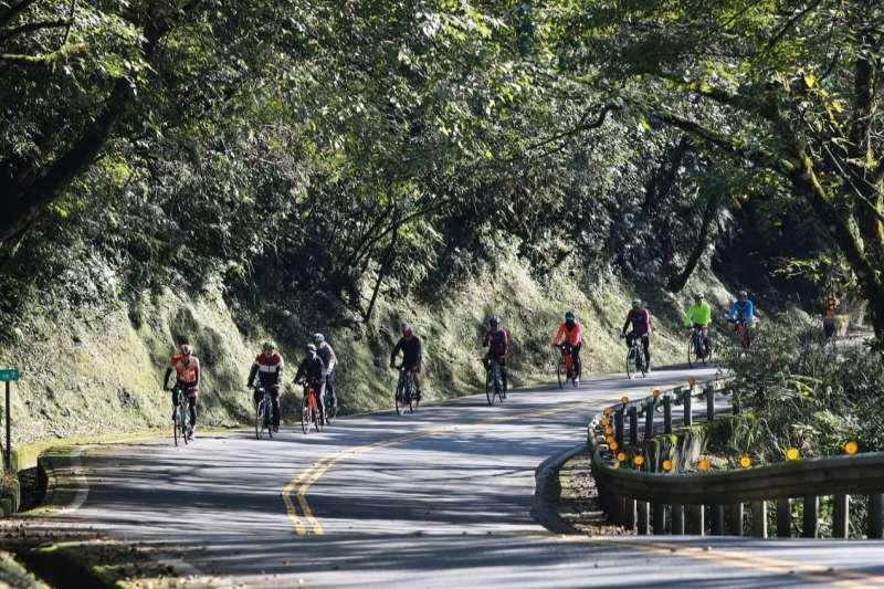 電動輔助自行車的電力輔助,讓一般大眾都能輕鬆在山林裡騎乘(圖片來源:捷安特旅行社)
