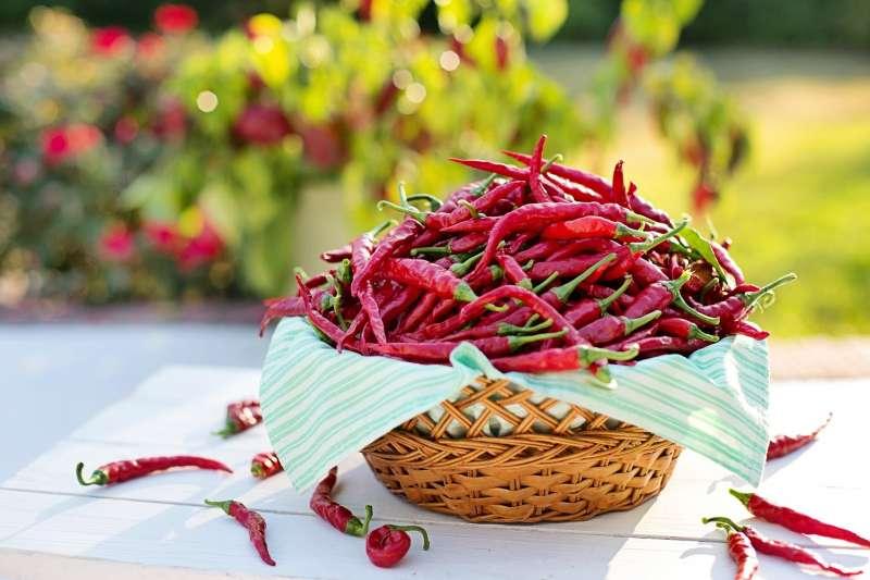 辣椒:令人痛並快樂著的食物為何風靡全球?(Pixabay)
