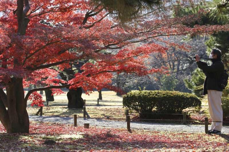 日本東京都立濱離宮恩賜庭園一景。(美聯社)