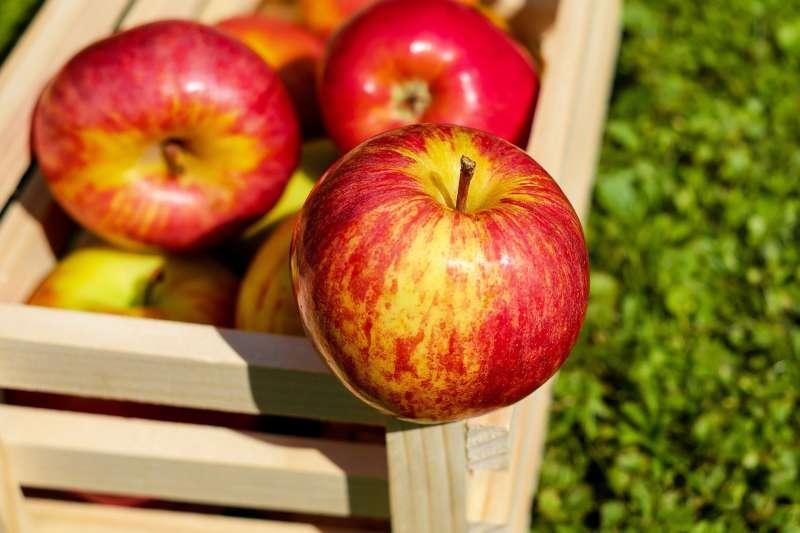 蘋果有何神奇之處,能輔助降低壞膽固醇?綠蘋果和紅蘋果的營養價值有差異嗎?(示意圖非本人/ Couleur@pixabay)