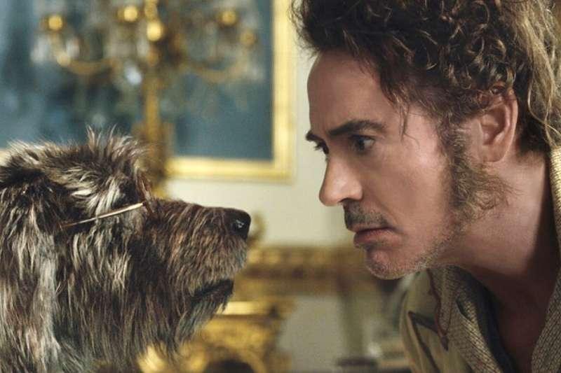 小勞勃道尼主演的賀歲片電影《杜立德》集結許多可愛動物,非常適合春節闔家觀賞。(圖/IMDb)