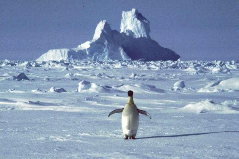 氣候變遷對南極生態造成衝擊。(美聯社)