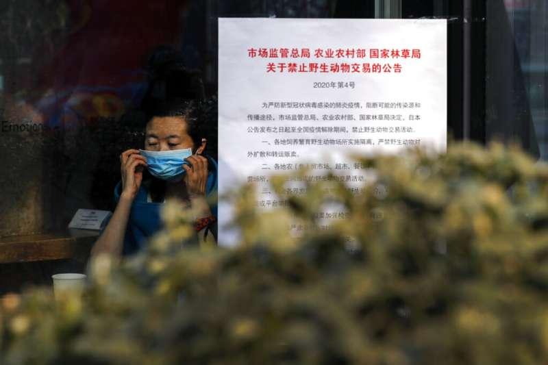 武漢肺炎疫情肆虐,北京街頭可以見到「禁止交易野生動物」的告示。(美聯社)