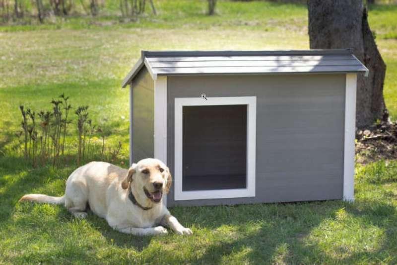 毛小孩居住地難尋,主人都想要寵物和自己有個專屬的窩,其實並不簡單。(圖/ flickr)