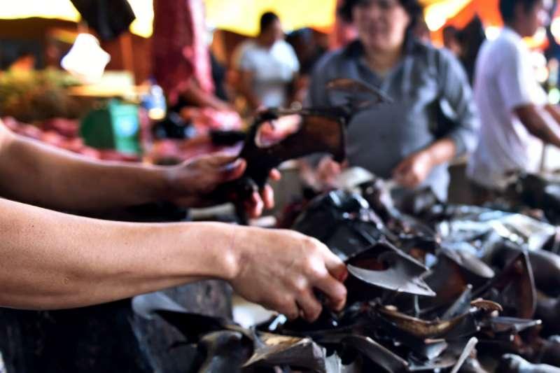 2017 年,印尼蘇拉威西一個市集,小販正準備販賣蝙蝠。(圖片來源:BAY ISMOYO/AFP via Getty Images/*CUP提供)