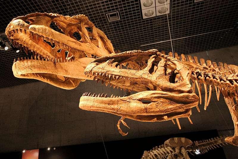 墨西哥希克蘇魯伯(Chicxulub)隕石撞擊墨西哥灣,極短的時間內造成白堊紀恐龍大滅絕。(圖/Kabacchi@Wikipedia/CC BY 2.0)