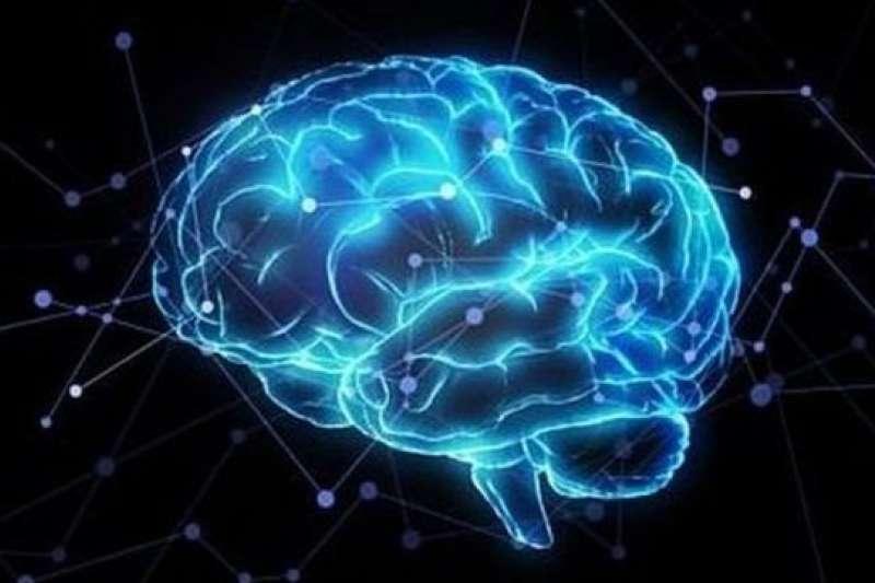 作者以貝氏觀點去檢視大腦。(示意圖,BBC News)