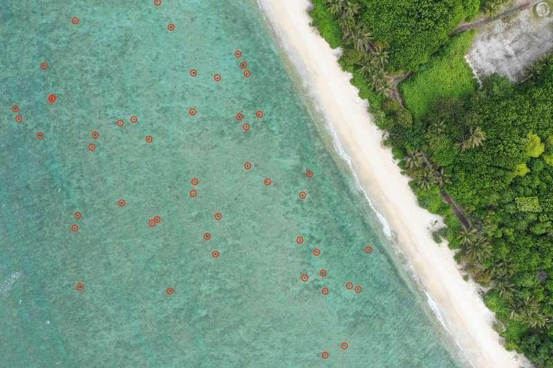 20200305-團隊在面積約0.2平方公里的區域之內,計算發現有近200隻的海龜。(中山大學提供)