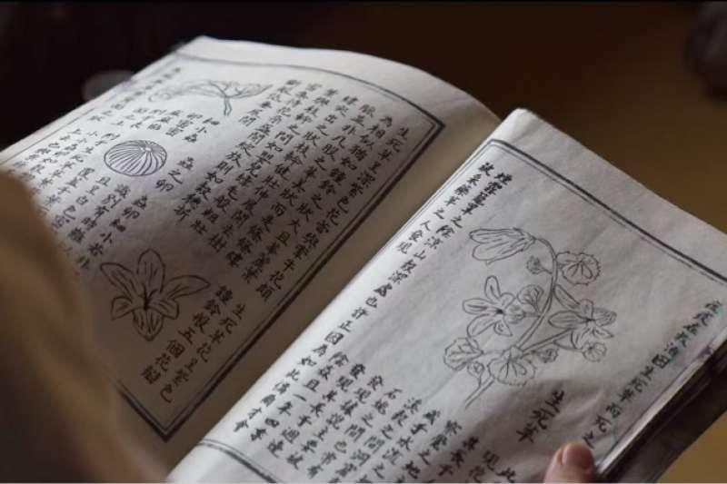 病理筆記全以漢字書寫,是亂搞還是根據史實?(圖/Netflix)