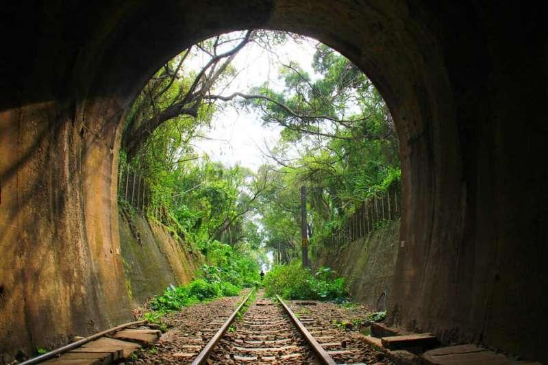 靜謐的森林與附近嘈雜的都市形成強烈對比,進入隧道彷彿走入奇幻時空。(圖/飛天璇Facebook)