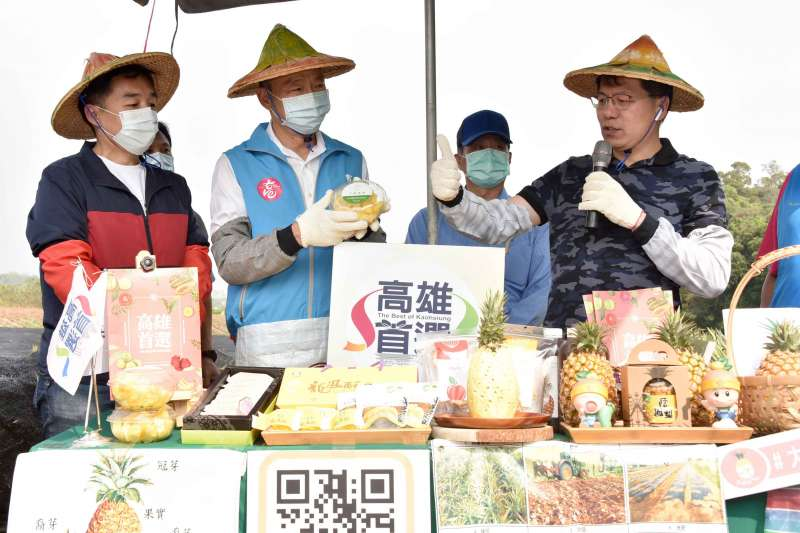 20200403-高雄市長韓國瑜今(3)日到大樹區鳳梨田了解鳳梨種植狀況。(高雄市政府提供)