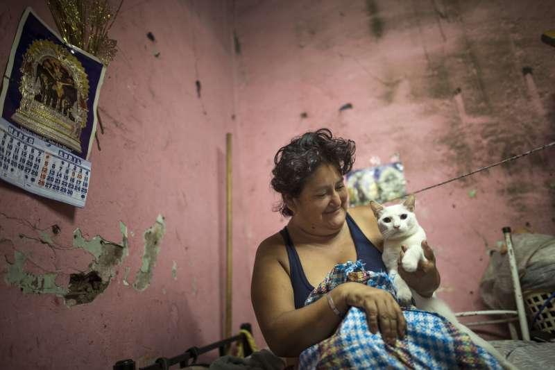 武漢肺炎:若飼主感染,可能會傳給寵物貓狗(AP)