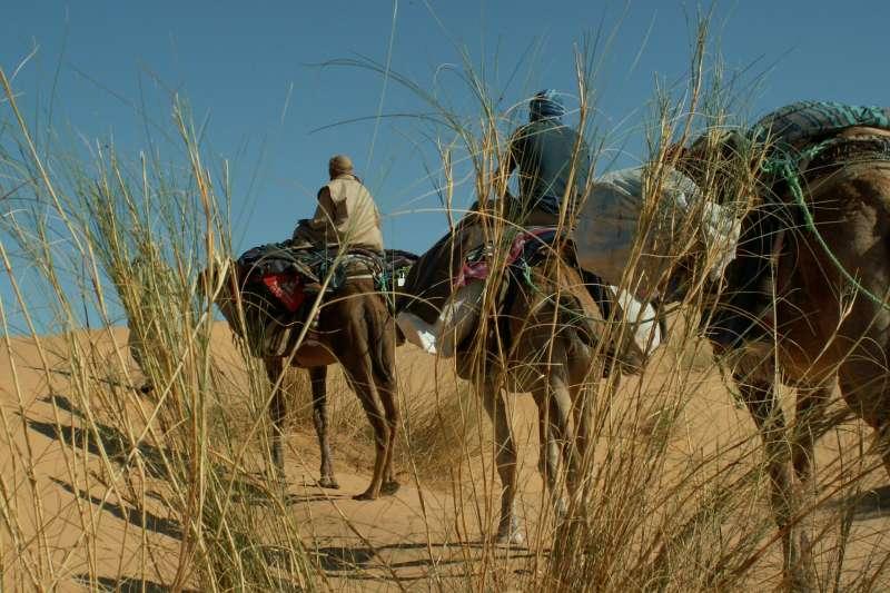 激進市場、遊牧民族、騎馬、沙漠(圖/pixabay)