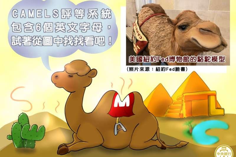 金融圈有隻知名駱駝,但此駱駝非彼駱駝,其實是指金融機構評等制度-CAMEL標準,台灣央行也參酌美國CAMEL標準,創立CARSEL標準。(圖/取自中央銀行@facebook)