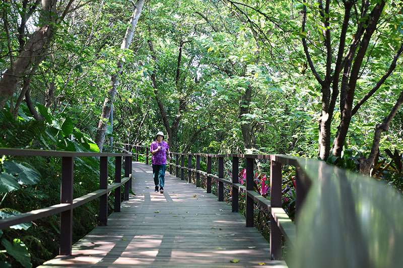 基地旁有嘉興公園和福州山公園享有靜巷清幽氛圍、鬧中取靜的獨厚環境。(圖/敦南好好提供)