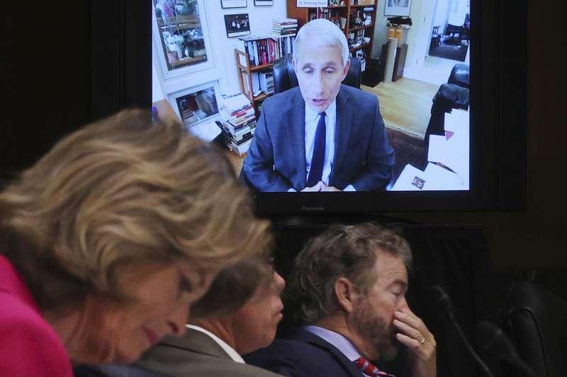 2020年5月12日,美國「抗疫隊長」佛奇(Anthony Fauci)以視訊連線方式出席聯邦參議院聽證會。(AP)