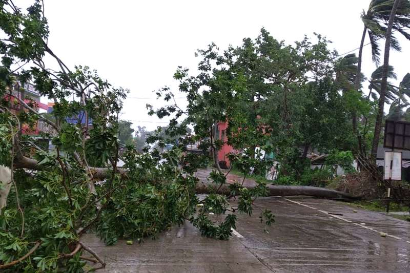 颶風「安攀」20日在印度與孟加拉登陸,印度奧里薩邦的樹木倒塌(美聯社)