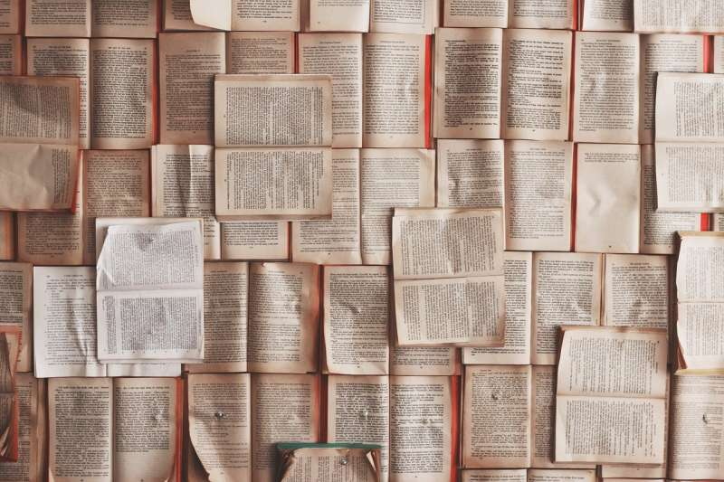 文學發展擁有始盛終衰的特性,在自由語體盛行過後,今日精緻文學始兆已現,將以其優美精緻的藝術特性,成為文學上新的主流。示意圖。(資料照,取自pixabay)