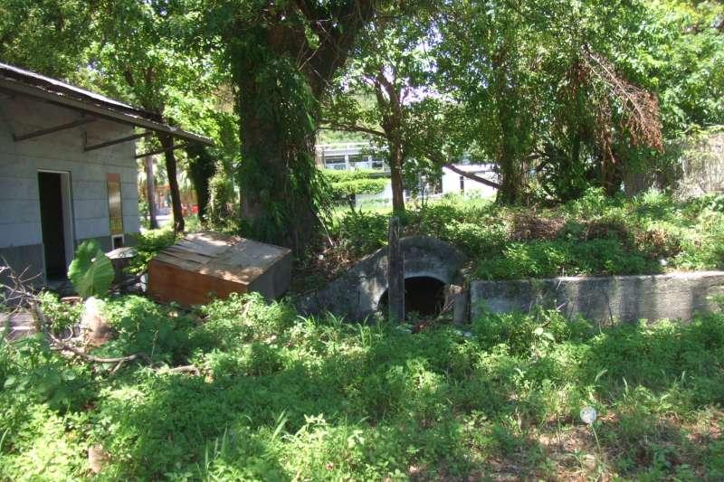 20200718-鐵花村成立前的荒地。鐵花村專題。(台灣好基金會提供)