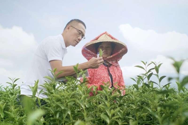茶飲研究員林建森說:「20 年前,台灣仍不盛行無糖茶飲,當時大家很難想像要如何讓無糖綠茶既不苦澀、又能回甘。」(圖/茶裏王提供)