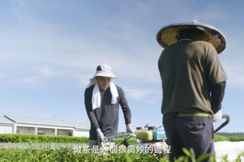 茶農蕭世賢說:「我從小就在這片茶園長大,對我來說做茶是一個很奧妙的過程,它的香氣和變化會讓人愛上。」(圖/茶裏王提供)