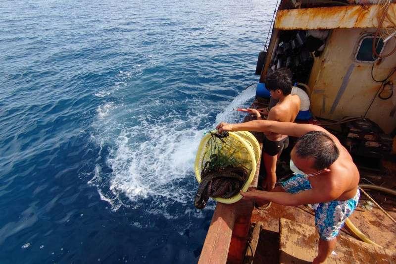 2020078-中國漁船進入我海域違法補發海鰻,遭海巡艦艇查扣。(海巡署提供)