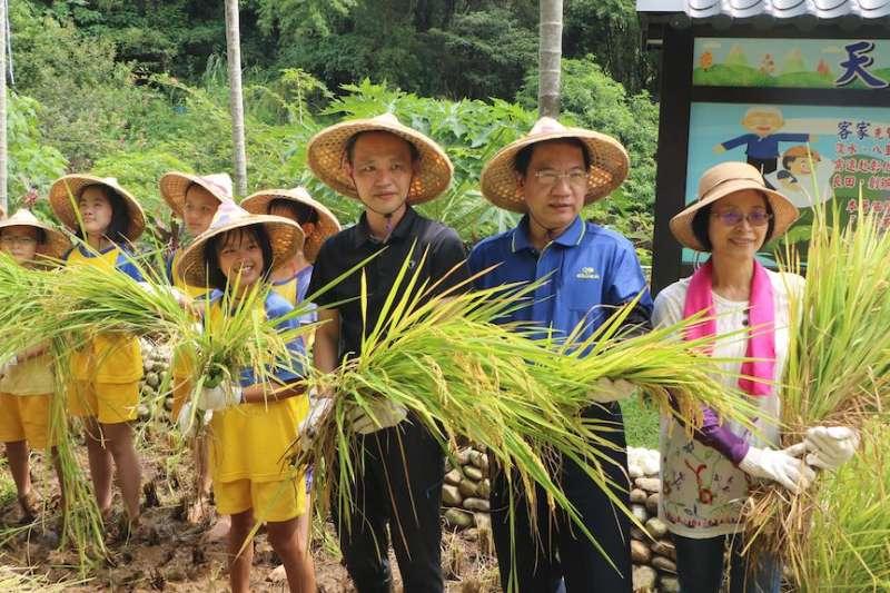 新北客家局邀請民眾一起體驗農夫耕作逗熱鬧。(圖/新北市客家局提供)