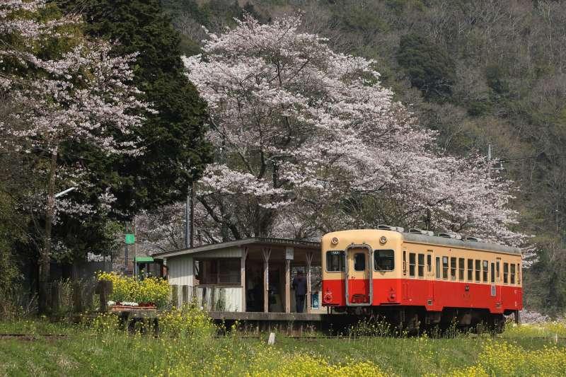 在千葉縣的飯給車站旁,有著「全世界最大的公廁」。(圖/twitter@toshiED7712)