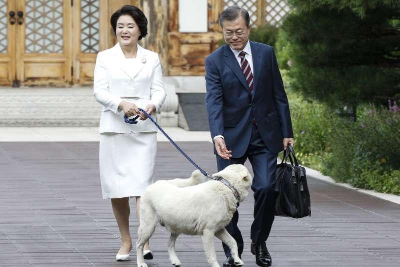 南韓總統文在寅原本就有養1隻名叫Maru的北韓豐山犬(AP)
