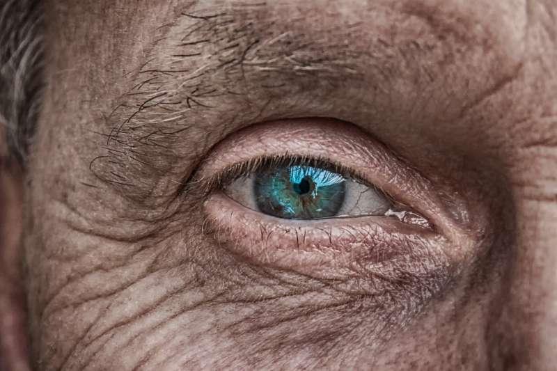 退休後不擔心財務困擾,勞保、就保皆有老年年金給付,民眾需注意兩者的相關牴觸資格。(pixabay)