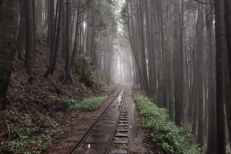 阿溪縱走路線景點-阿里山眠月線鐵道。(圖/Tripbaa趣吧!達人帶路)