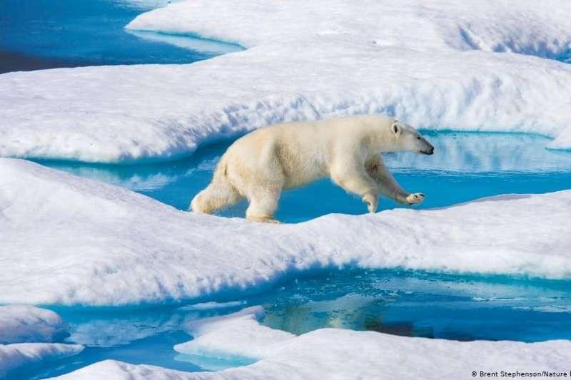 北極海域發現塑膠微粒,92%是人造纖維。工業廢水與生活污水恐對脆弱的北極生態造成影響。(圖/德國之聲)