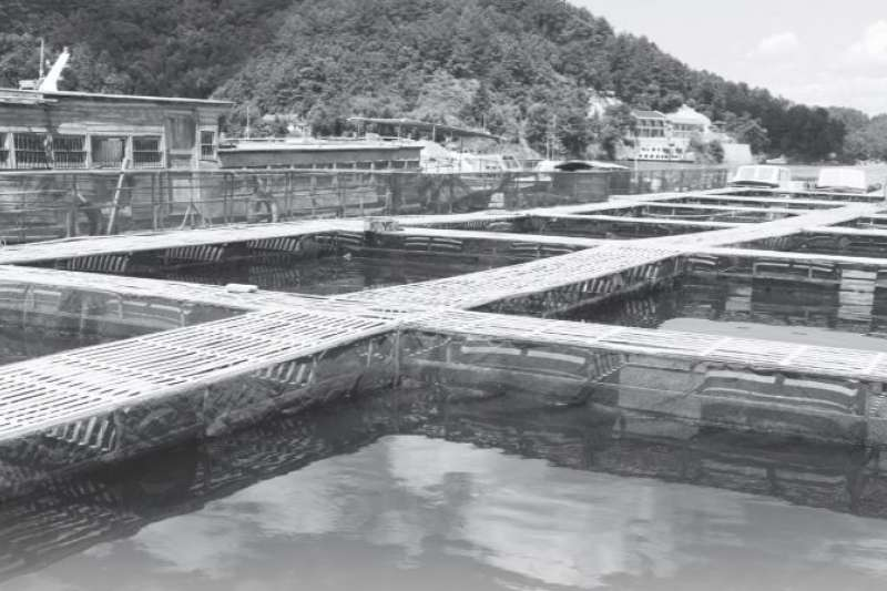 在魚塭中建立數個水泥長方形養殖池,只要定期用汙泥泵抽出糞便,就樣沉澱法就去除糞便,終年不用「曬塘」。(示意圖,取自農委會)